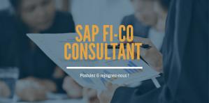 Consultant SAP FICO