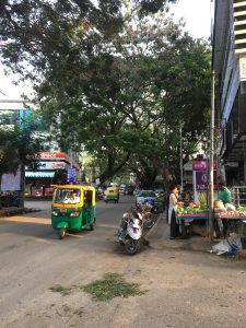 D Rajgopal Rd, Sanjaynagar, Banglalore