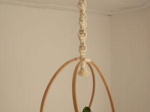 Hanger Circle of Life