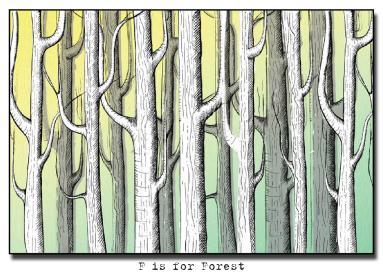 A forest illustration