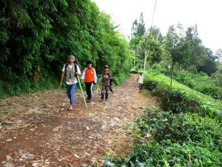 Pejalan kaki menuju Pondok Halimun