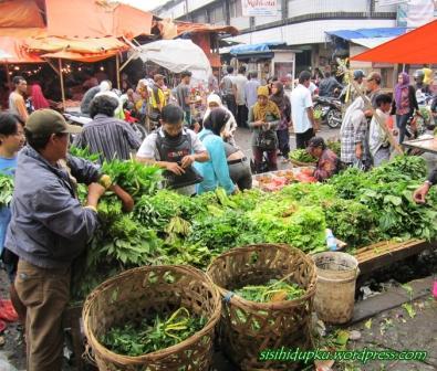 Berbagai sayuran segar