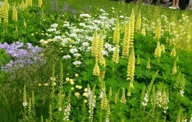 The Laurent-Perrier garden