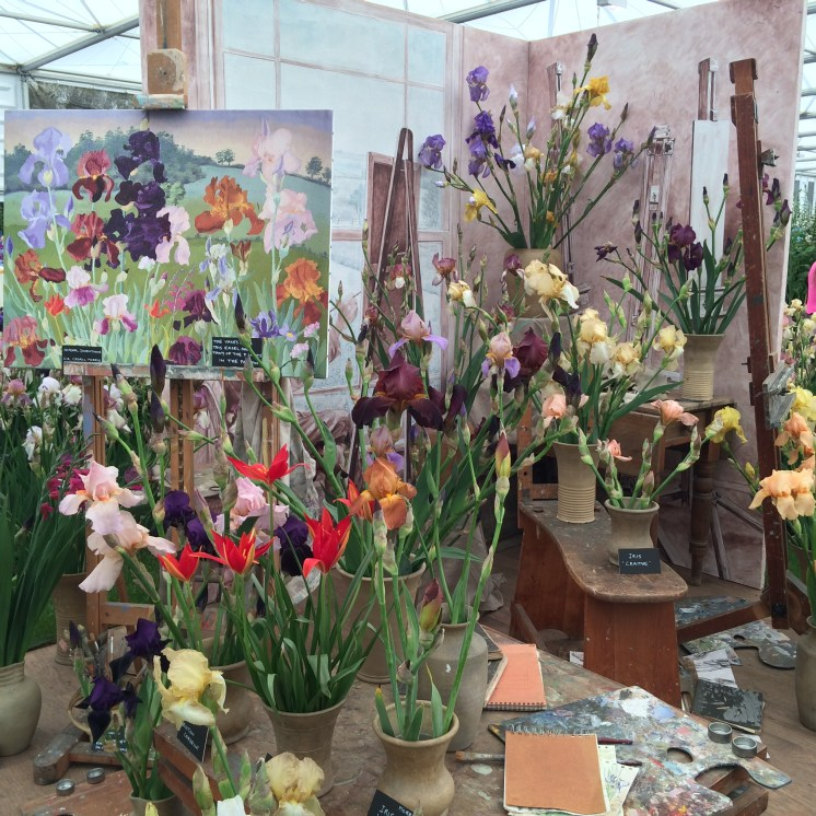 The Cedric Morris iris display at Chelsea. A Gold medal winner.