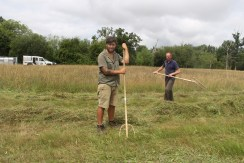 Pete and Josh raking the hay.