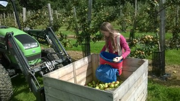 ...and daughter Saskia helps whilst quality testing.