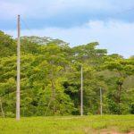 No más oscuridad en Fonseca porque ya tienen energía eléctrica
