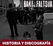 Bake faltsua | Punk rock