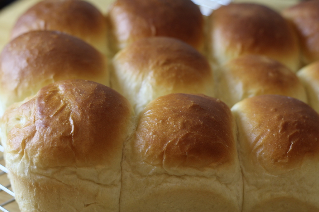 Sweet and Soft Dinner Rolls