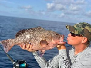 Who else has caught a Kitty Mitchell? This was at the too of my offshore bucket list! 🇺🇸🇺🇸-Amy Lockhart