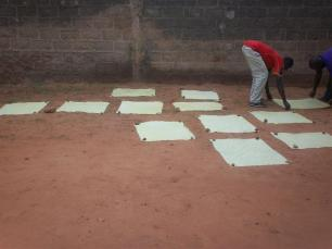 Photo Burkina Faso - Juillet 2010 (1295) (Medium)