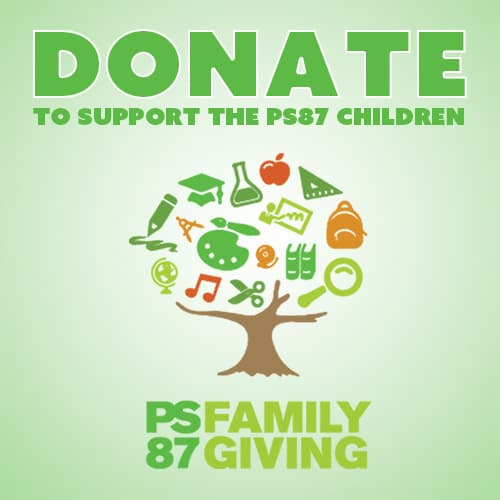 donate to support ps87