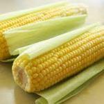 O milho na culinária cearense