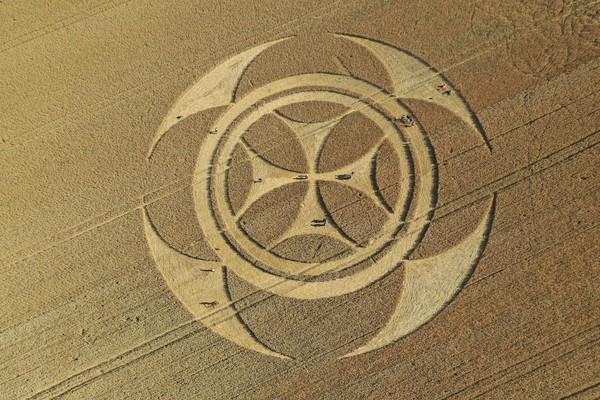 Símbolo gigantesco em campo de trigo atrai atenção de curiosos na França