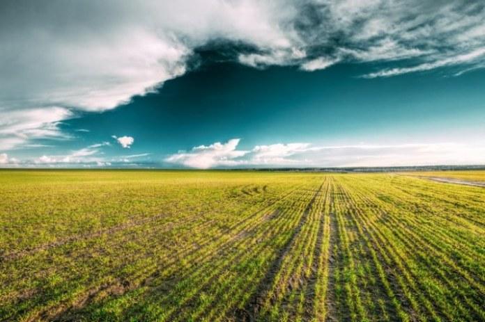Contratação do crédito rural bate recorde no primeiro mês do Plano Safra