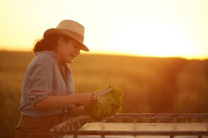 Ministério da Agricultura trabalha para estimular a organização das mulheres no campo, diz Tereza Cristina