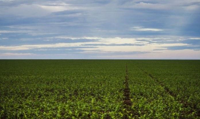 Decreto traz regras e procedimentos para a regularização fundiária de áreas rurais em terras da Amazônia Legal e do Incra
