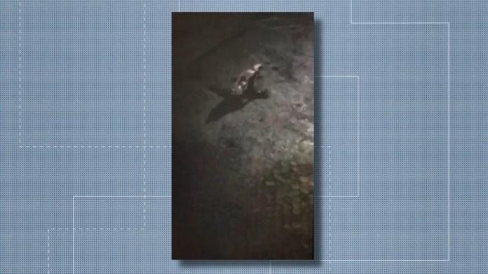 Imagens mostram agressão a motoboy em Colatina — Foto: Reprodução/ TV Gazeta