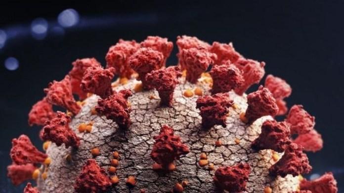 Caso suspeito de nova variante do coronavírus, que circula em Manaus é investigada no ES — Foto: Getty Images via BBC