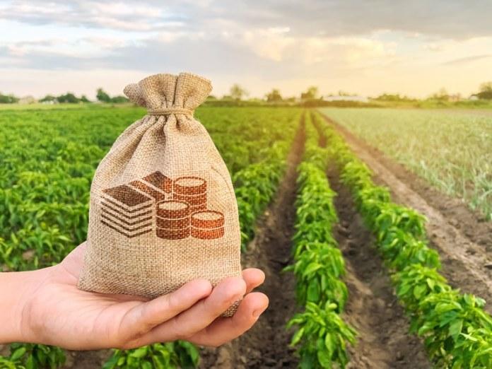 Contratação do crédito rural alcança mais de R$ 147 bilhões em oito meses