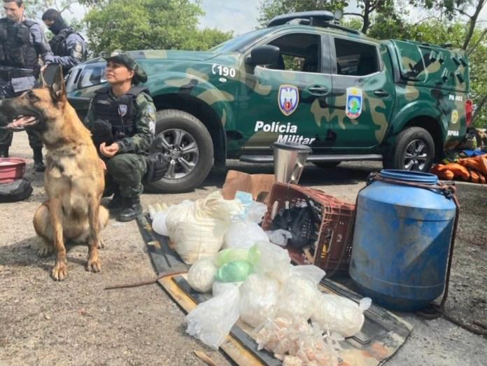 Drogas foram encontradas em cabana que funcionava como laboratório de fabricação de drogas em Cariacica