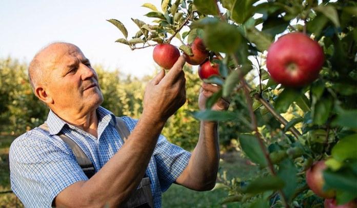 Programa apoiará 40 empreendimentos rurais no semiárido