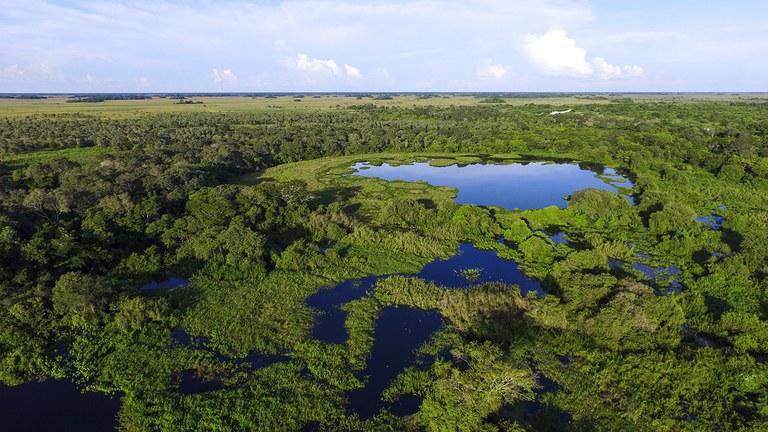 Ações de compensação ambiental somam mais de R$ 319 milhões