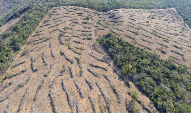 Desmatamento em Colatina, ES, é registrado por drone — Foto: Divulgação/ Idaf