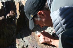 Henry Fricke ponders minerals in a metamorphosed igneous rock.