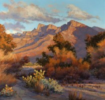 Darcie Swenarton Peet '68