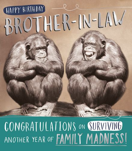 Funny Brother In Law Birthday Cards Another Year Of Family Madness Funny Brother In Law Cards Brother In Law Birthday Cards Monkey Cards