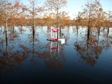 Floating gas collar collects trace gases from a restored wetland (7 years ago this was a cornfield) in eastern North Carolina (photo by E.S. Bernhardt)