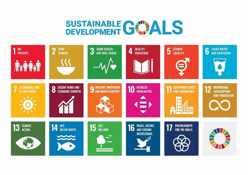 Sustainable Development Goal info graphic
