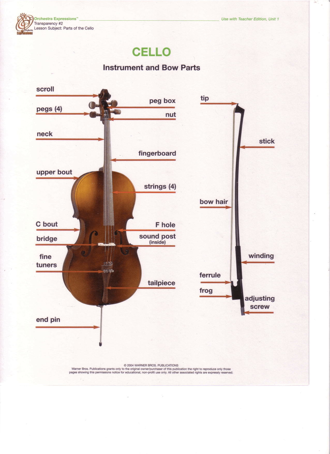 Parts Of The Violin Worksheet