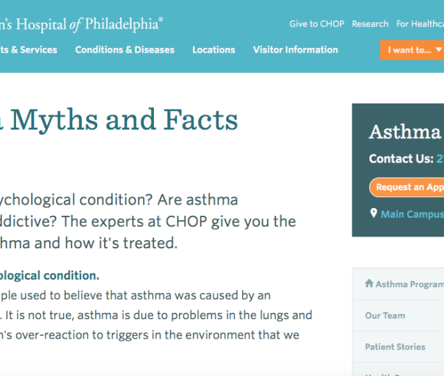 On This Website Professionals Have Debunked Common Myths And Explain The Truth About Asthma What It Is And How To Treat It