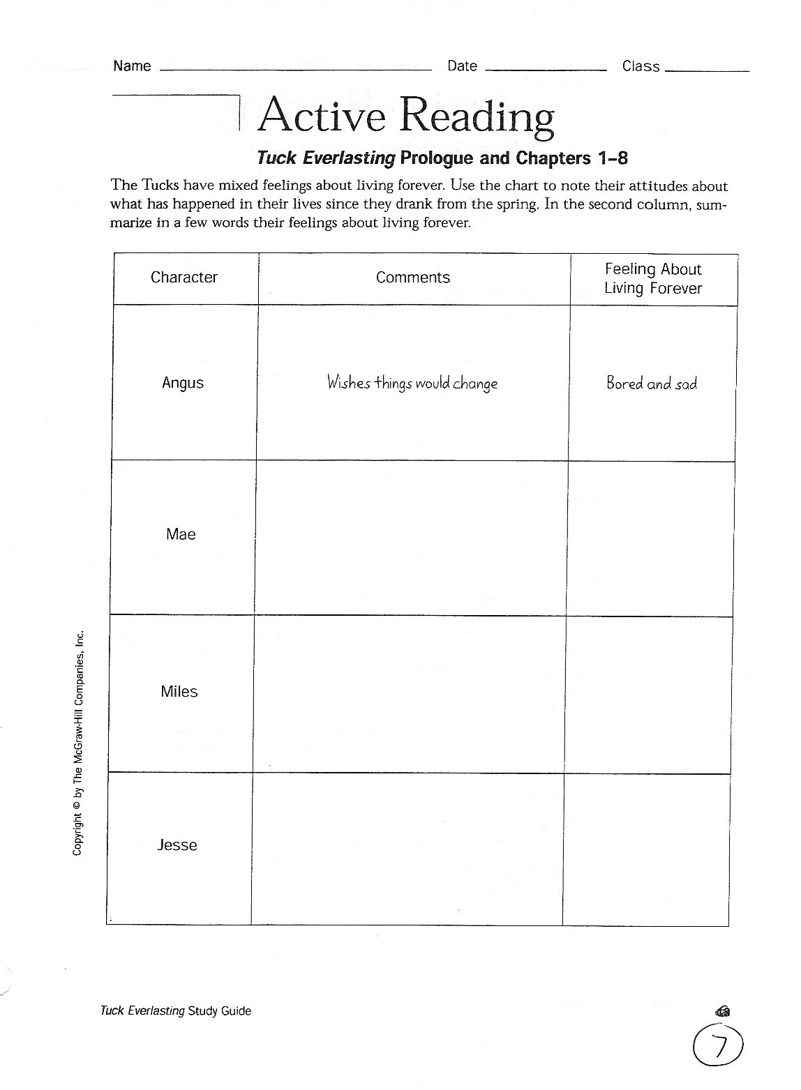 Night Wiesel Worksheet