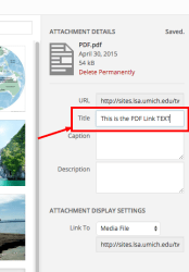 PDF Link Text