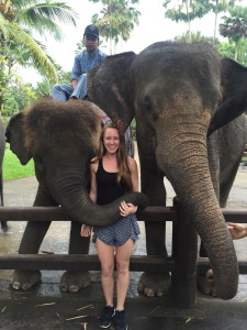 Posing with a few elephants