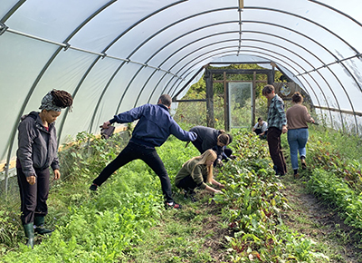 Students from Xavier work in an urban farm during an immersive learning experience with Detroit Mercy's Campus Kitchen.