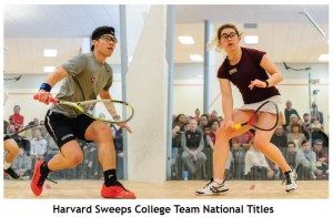 US Colleges: Victor Crouin champion avec Harvard