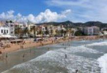 logo Olivia wine cocktail bar