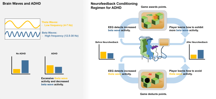Figure 2. Neurofeedback as a treatment for attention-deficit hyperactivity disorder (ADHD). Children diagnosed with ADHD, who struggle to focus their attention, tend to display lower levels of high frequency beta waves and higher levels of low frequency theta waves, while children without this diagnosis show the opposite pattern (left). This observation suggests that beta waves are associated with an enhanced ability to focus. Neurofeedback training therefore seeks to elevate the magnitude of beta waves and suppress the magnitude of theta waves using operant conditioning paradigms (right). During training, the patient receives feedback about their own brain activity, sometimes in the form of a videogame.