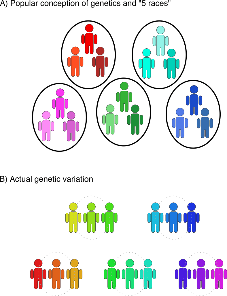 Fig1-raceConception-2.png