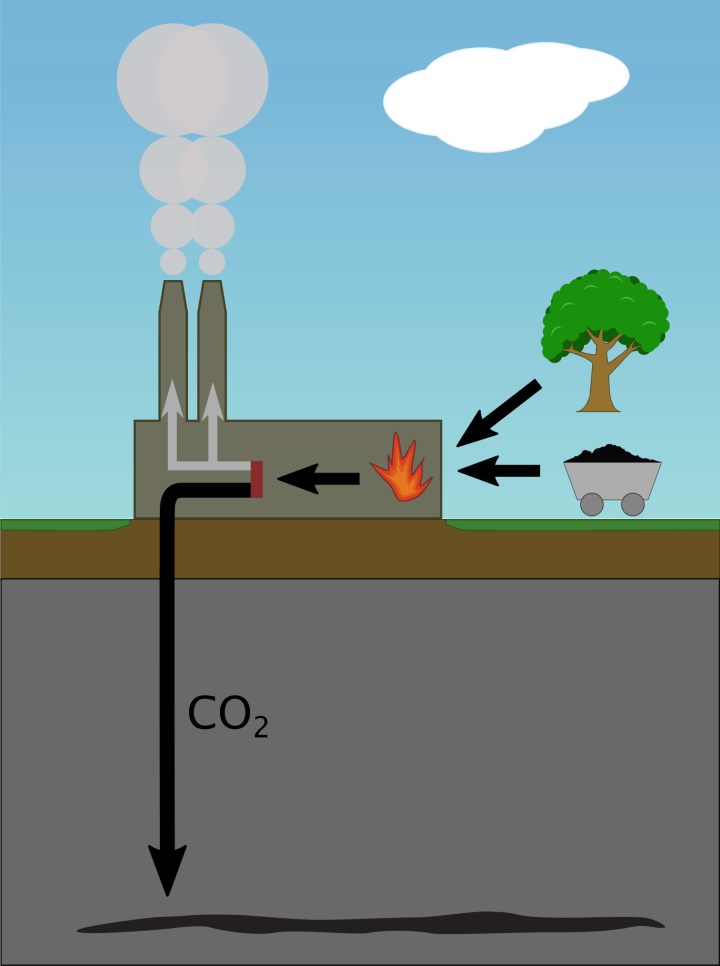 Biomass over Coal: Burning Different Carbon to Mitigate