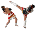 Classes in Muay Thai