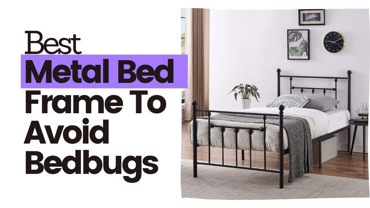 The Best Bed Frame To Avoid Bedbugs