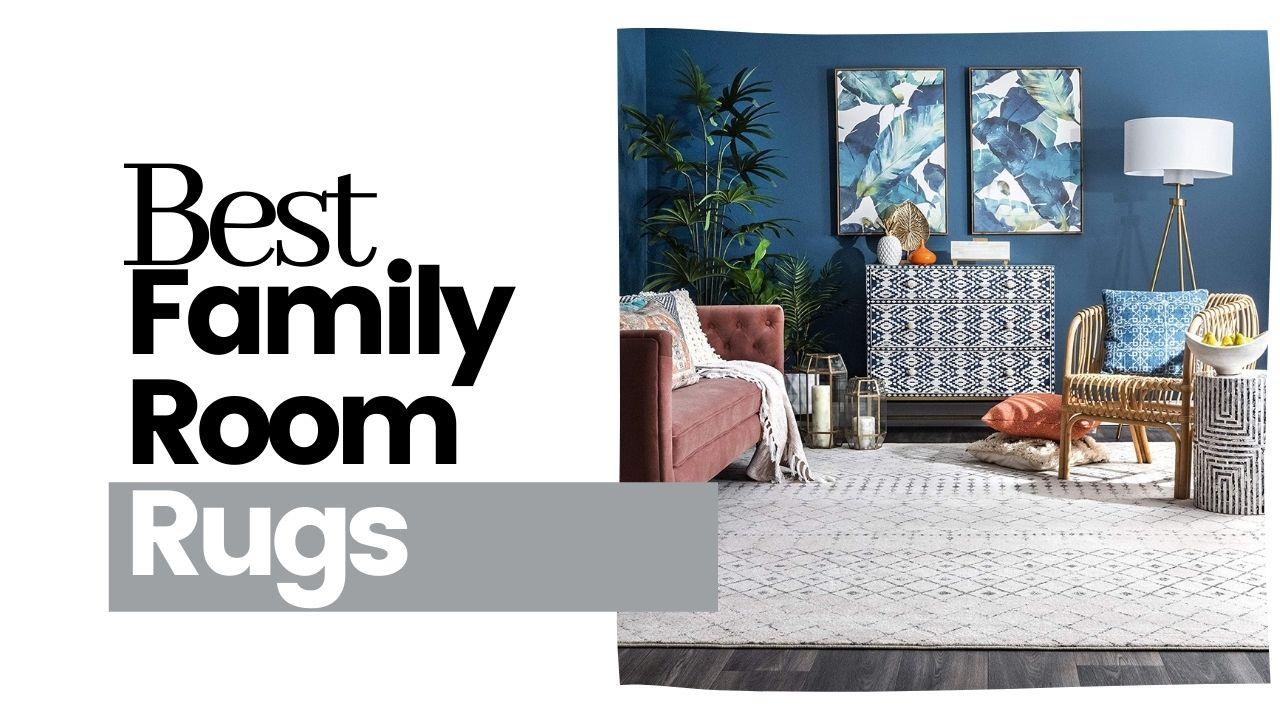 Best Family Room Rugs