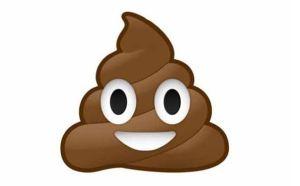 Fakta Unik Tentang Poop