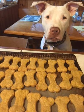 Isaac's foster mom, Susan Molson, donated 3 dozen beefy biscuits and so much more!