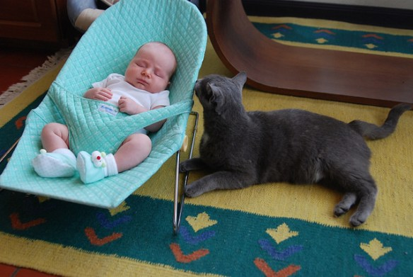 The April 30th Picture of the Day. It's Will and Chubby, both kinda meeting for the first time, both being cute.